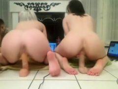 Erstaunliche Show auf Webcam